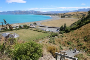 2017 New Zealand_0336