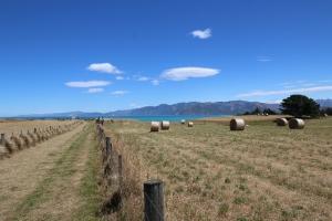 2017 New Zealand_0338