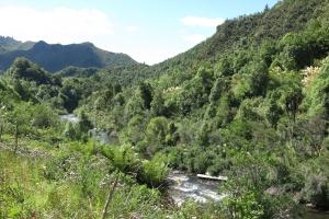 2017 New Zealand_0437
