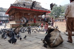 2019-Kathmandu_0027