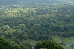 Sri-Lanka-2020_0045