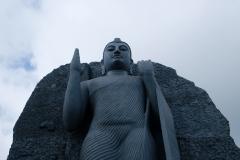 Sri-Lanka-2020_0059