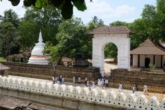 Sri-Lanka-2020_0199