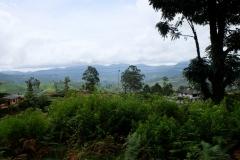 Sri-Lanka-2020_0233