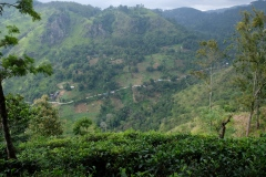 Sri-Lanka-2020_0276