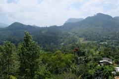 Sri-Lanka-2020_0314