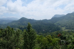 Sri-Lanka-2020_0316