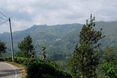 Sri-Lanka-2020_0320