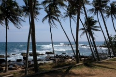 Sri-Lanka-2020_0393
