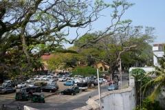 Sri-Lanka-2020_0451