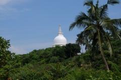 Sri-Lanka-2020_0455